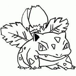 Desenhos Do Pokemon Desenhos Para Colorir
