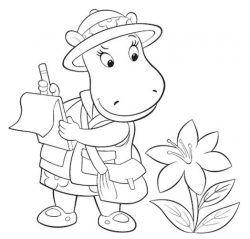 Desenhos Da Discovery Kids Para Colorir E Imprimir Desenhos Para