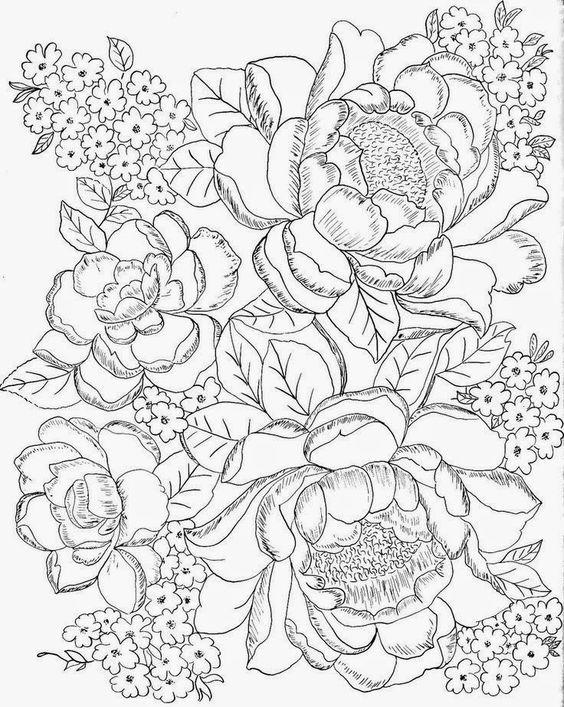 Flores Silvestres Para Adulto Colorir Desenhos Para Colorir