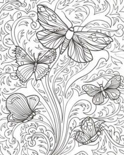 Desenhos De Borboleta Para Colorir E Imprimir Desenhos Para Colorir