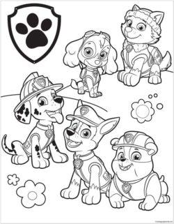 Desenhos Da Patrulha Canina Para Colorir E Imprimir Desenhos