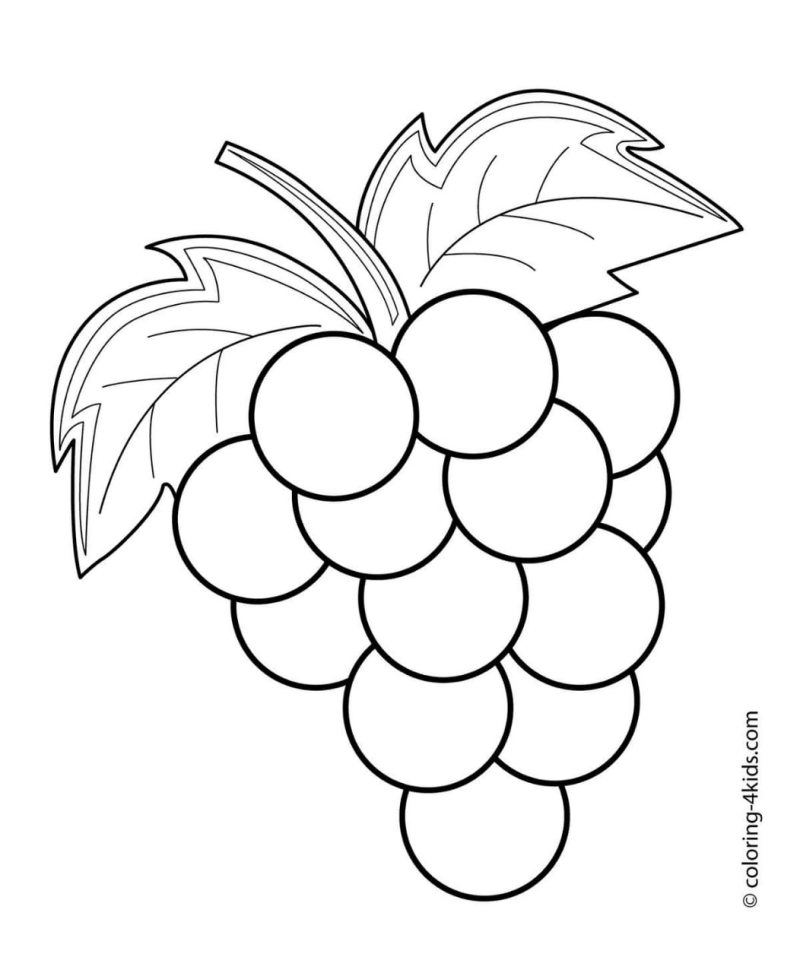 Cacho de Uva Para Colorir Desenhos para Colorir