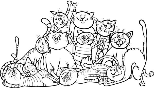 Turma De Gatos Divertidos