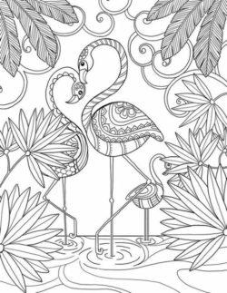 Desenhos Para Adultos Colorir E Imprimir Desenhos Para Colorir