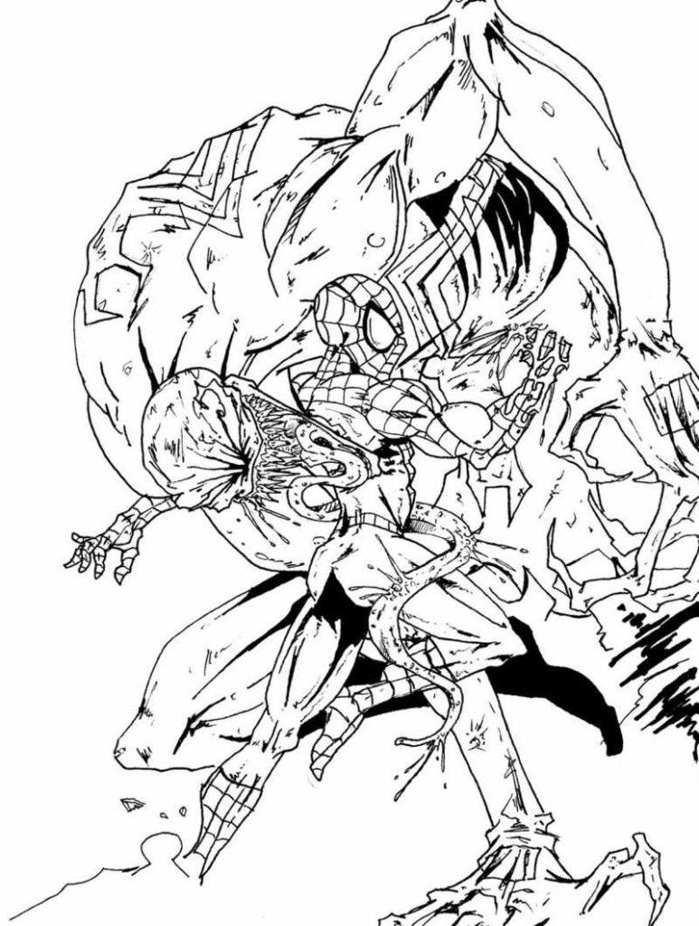 Super Heróis Homem Aranha Contra Venom Desenhos Para Colorir