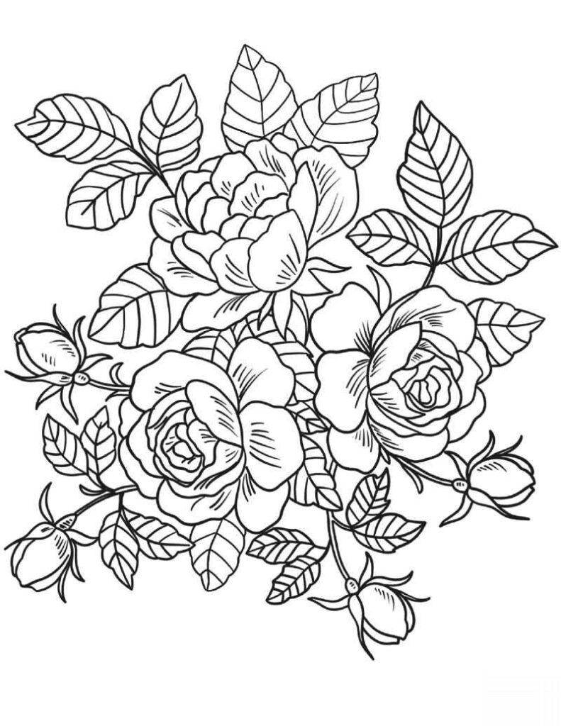 Ramo De Rosas Para Colorir Desenhos Para Colorir