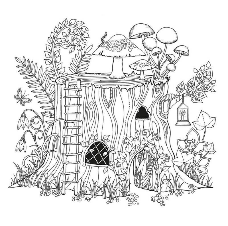 Desenho Adulto Jardim Magico Desenhos Para Colorir