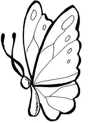 borboleta-211232