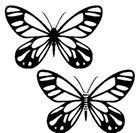 borboleta-4332