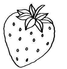 Morango Frutas