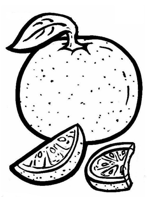 Pedacos De Laranjas Frutas Desenhos Para Colorir