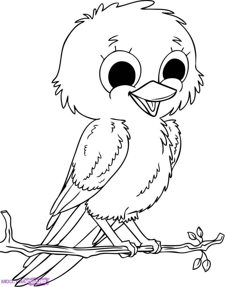 Passarinho Cantando on angry birds coloring pages