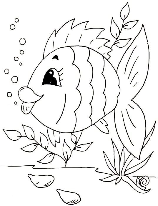 fish coloring pages for girls - photo#22